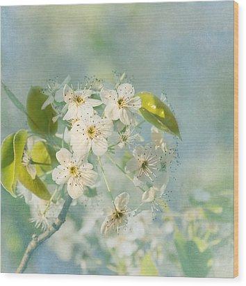 Song Of Spring Wood Print by Kim Hojnacki