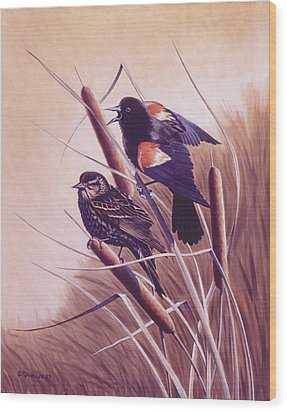 Song Of The Marsh Wood Print by Richard De Wolfe