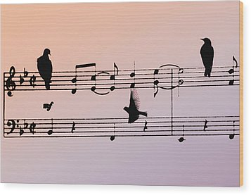 Songbirds Wood Print by Bill Cannon