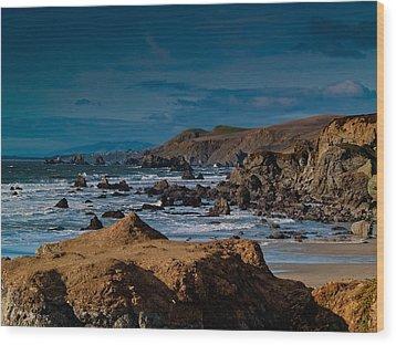 Sonoma Coast Wood Print by Bill Gallagher