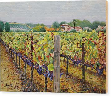Sonoma Vineyard Wood Print by Ron Aucutt