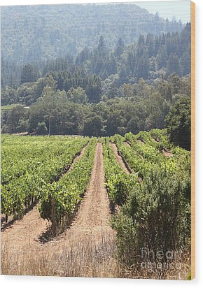 Sonoma Vineyards In The Sonoma California Wine Country 5d24515 Vertical Wood Print by Wingsdomain Art and Photography