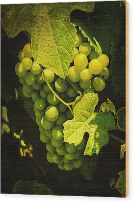 Sonoma Wine Grapes 002 Wood Print by Lance Vaughn