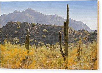 Sonoran Desert Beauty Wood Print by Betty LaRue
