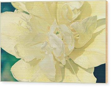Soothing Daffodils Wood Print by Sonali Gangane