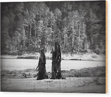 Wood Print featuring the photograph Soul Mates by Max Mullins