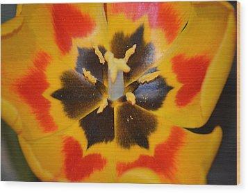 Soul Of A Tulip Wood Print by Sonali Gangane