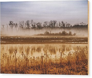 Sounds Of Silence Wood Print by Tom Druin