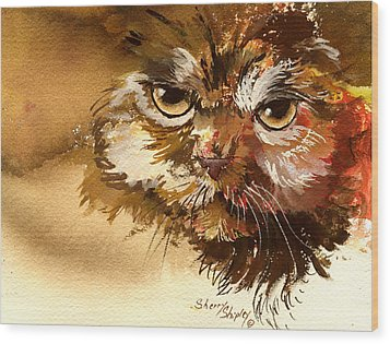Sour Puss Wood Print by Sherry Shipley