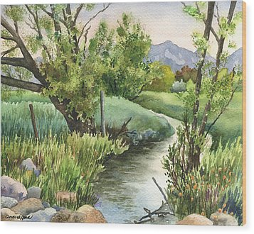 South Boulder Creek Wood Print
