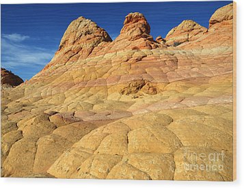South Coyote Buttes 4 Wood Print by Bob Christopher