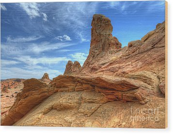 South Coyotte Buttes 8 Wood Print by Bob Christopher