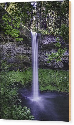 South Falls Wood Print