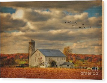 South For The Winter Wood Print by Lois Bryan
