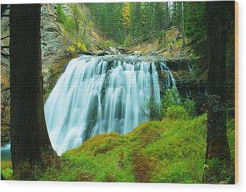 South Fork Falls  Wood Print by Jeff Swan