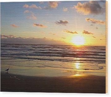 South Padre Island Sunrise Wood Print
