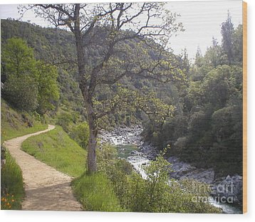 Wood Print featuring the photograph South Yuba Trail by Rachel Lowry