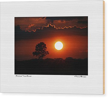 Southeast Texas Sunset Wood Print by Travis Burgess