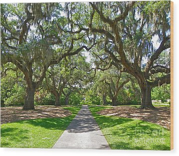 Southern Charm Wood Print by Eve Spring