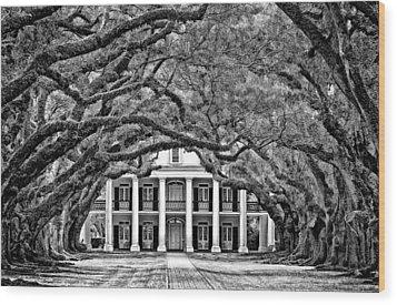Southern Class Monochrome Wood Print by Steve Harrington