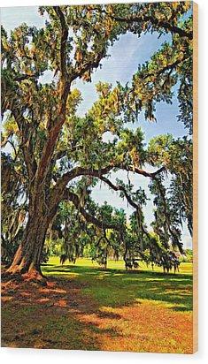 Southern Comfort Painted Wood Print by Steve Harrington