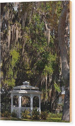 Southern Gothic In Mount Dora Florida Wood Print by Christine Till