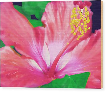 Wood Print featuring the photograph Southern Hibiscus by Diane Miller