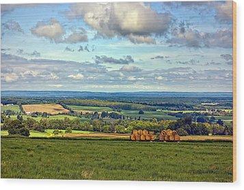 Southern Ontario Wood Print by Steve Harrington