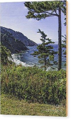 Southern Oregon Coastline Wood Print