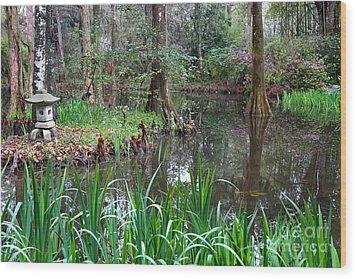 Southern Serenity Wood Print by Carol Groenen