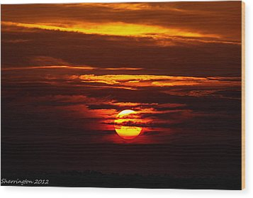 Southern Sunset Wood Print