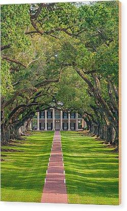 Southern Time Travel Wood Print by Steve Harrington