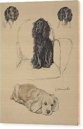 Spaniels, 1930, Illustrations Wood Print by Cecil Charles Windsor Aldin