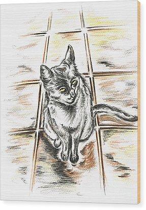Spanish Cat Waiting Wood Print