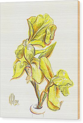Spanish Irises Wood Print