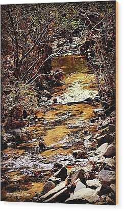 Wood Print featuring the photograph Sparkling Creek by Tara Potts