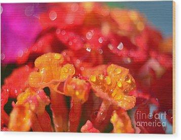 Sparkling Jeweltone Floral II Wood Print by Debbie Portwood