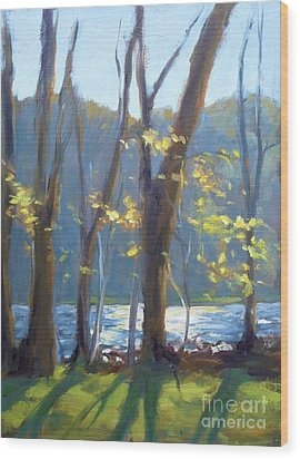 Sparkling Light On The Lake Wood Print