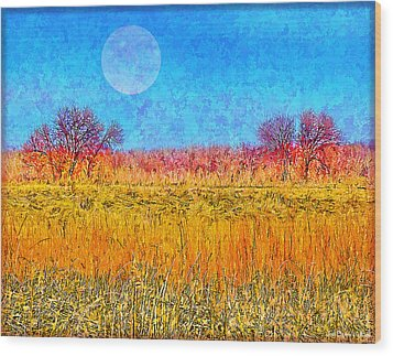 Wood Print featuring the digital art Moonlight Over Fields Of Gold - Boulder County Colorado by Joel Bruce Wallach