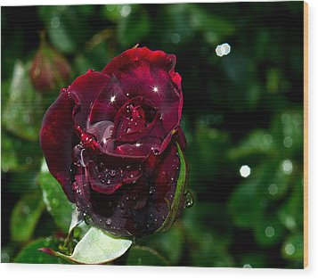 Sparkling Red Rose Wood Print by Camille Lopez