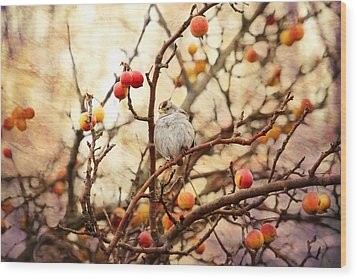 Sparrow In A Crab Apple Tree Wood Print by Peggy Collins