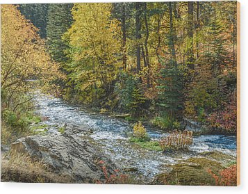 Spearfish Creek Autumn Wood Print