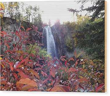 Spearfish Falls Wood Print