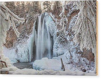 Spearfish Falls Wood Print by Jana Thompson
