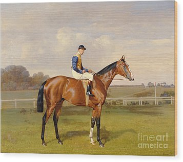 Spearmint Winner Of The 1906 Derby Wood Print by Emil Adam