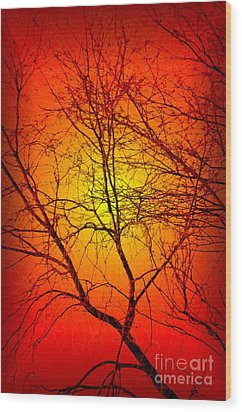 Spectral Sunrise Wood Print by Tlynn Brentnall
