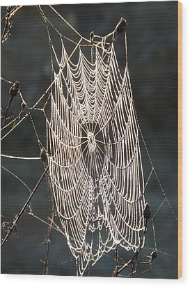 Spider Web Wood Print