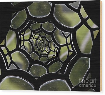 Wood Print featuring the photograph Spider's Web. by Clare Bambers