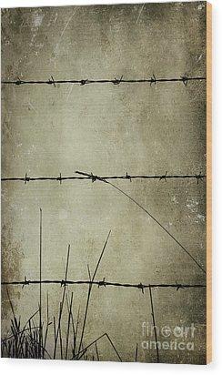 Spikey Wire Wood Print by Svetlana Sewell