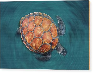 Spin Turtle Wood Print